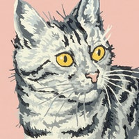 How do cats think? Study uncovers one surprising behavior