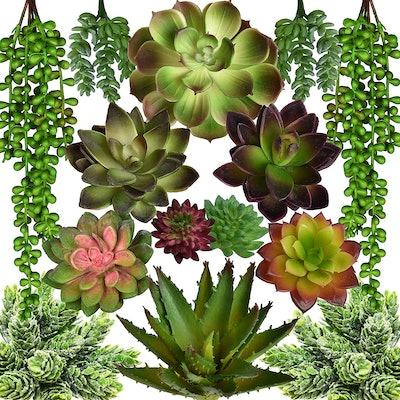Seeko Artificial Succulents (Set Of 14)