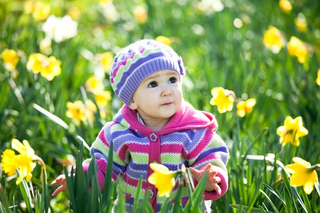 Lovely baby in blooming daffodils