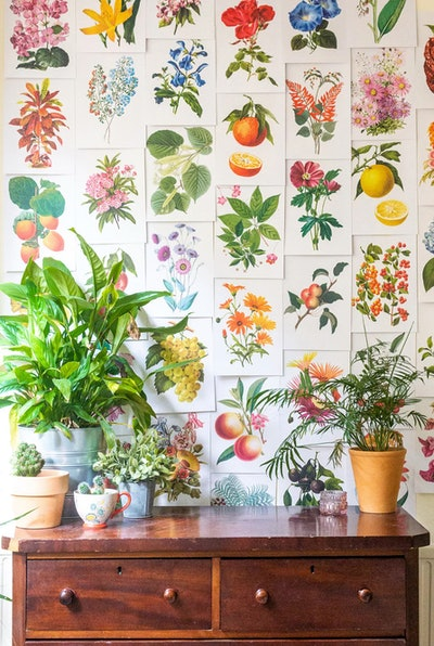Cai & Jo Botanical Collage Kit