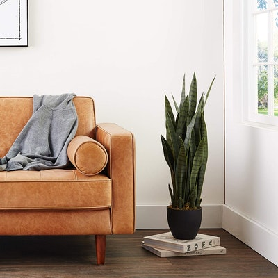 Nearly Natural Sansevieria