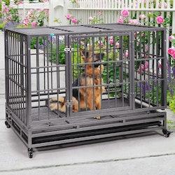 best heavy duty dog crates amazon