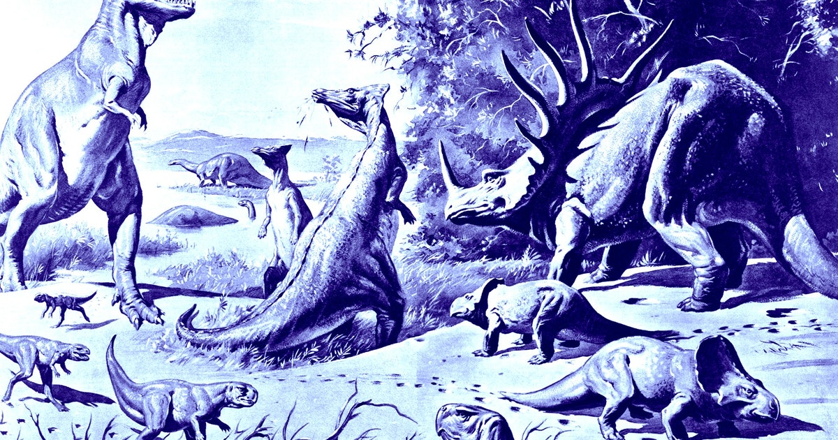 New-found oldest primate ancestor watched the dinosaurs die