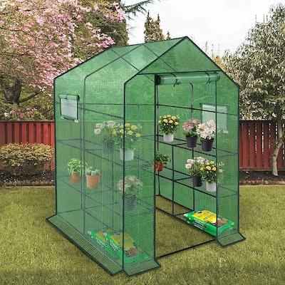 Enstver Walk-In Greenhouse