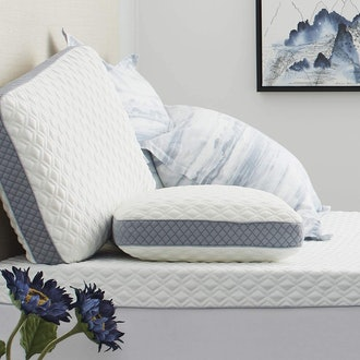Sealy Molded Memory Foam Pillow