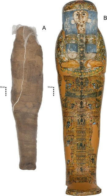 A figure of the mummy's remains and coffin from the paper