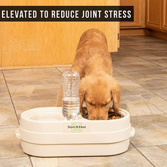 Our Pets Store-N-Feed Adjustable Raised Dog Bowl