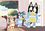 Families can catch up on Bluey and Bingo's latest adventures by watching season 2 of 'Bluey.'