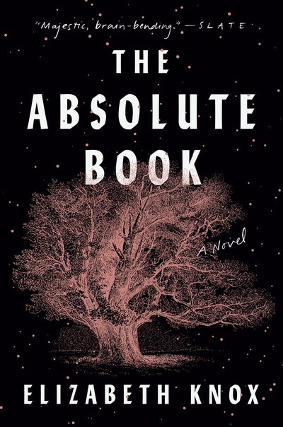 'The Absolute Book' by Elizabeth Knox