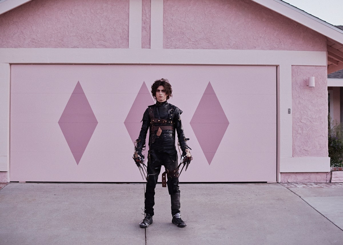 Timothee Chalamet in Cadillac's Edward Scissorhands Super Bowl ad.