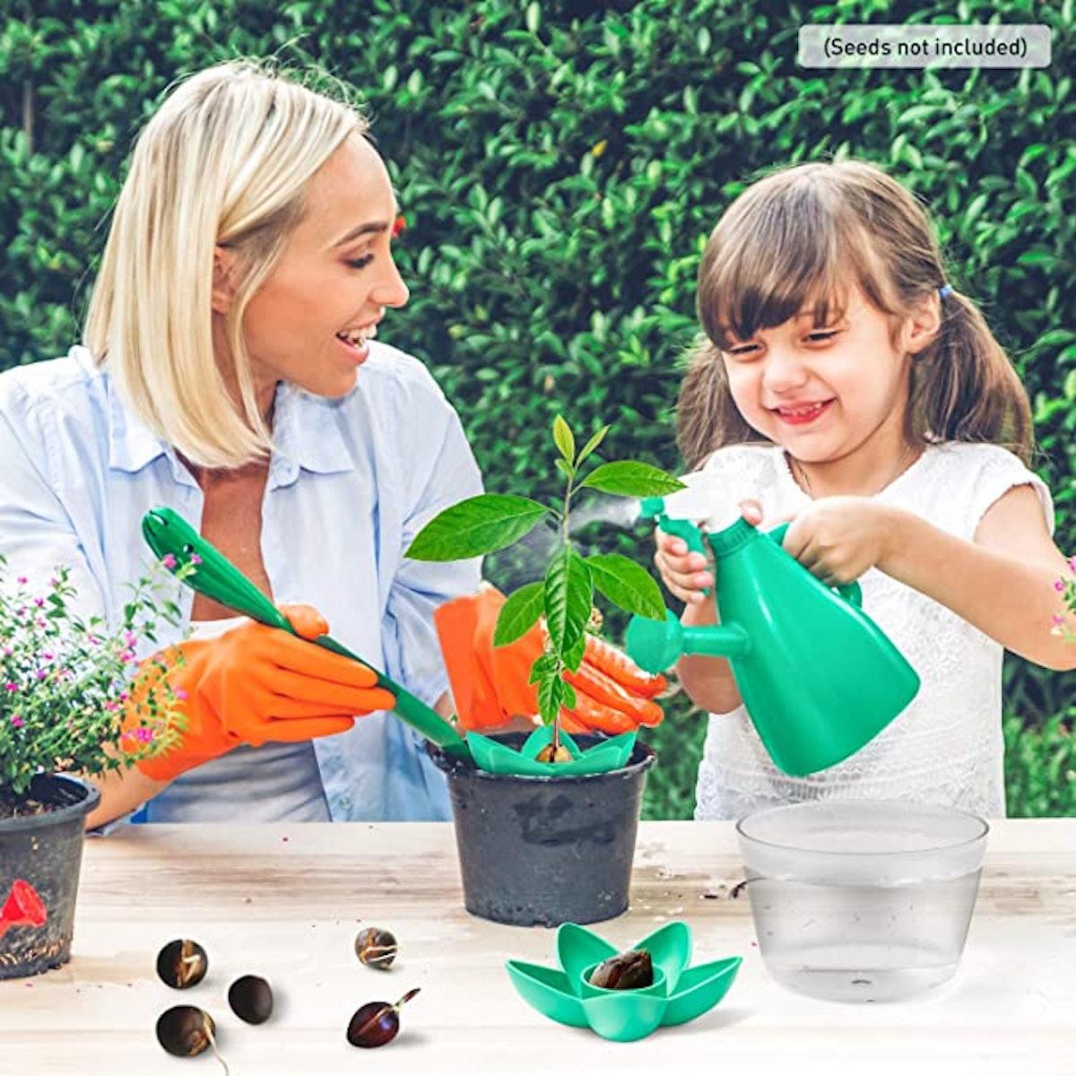 HENMI Avocado Growing Kit