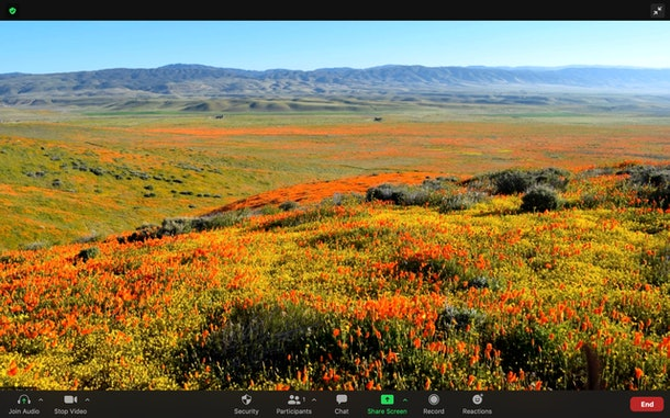 These spring Zoom backgrounds include so many wanderlust-worthy locations around the world.