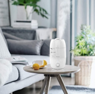 iTvanila Cool Mist Humidifier