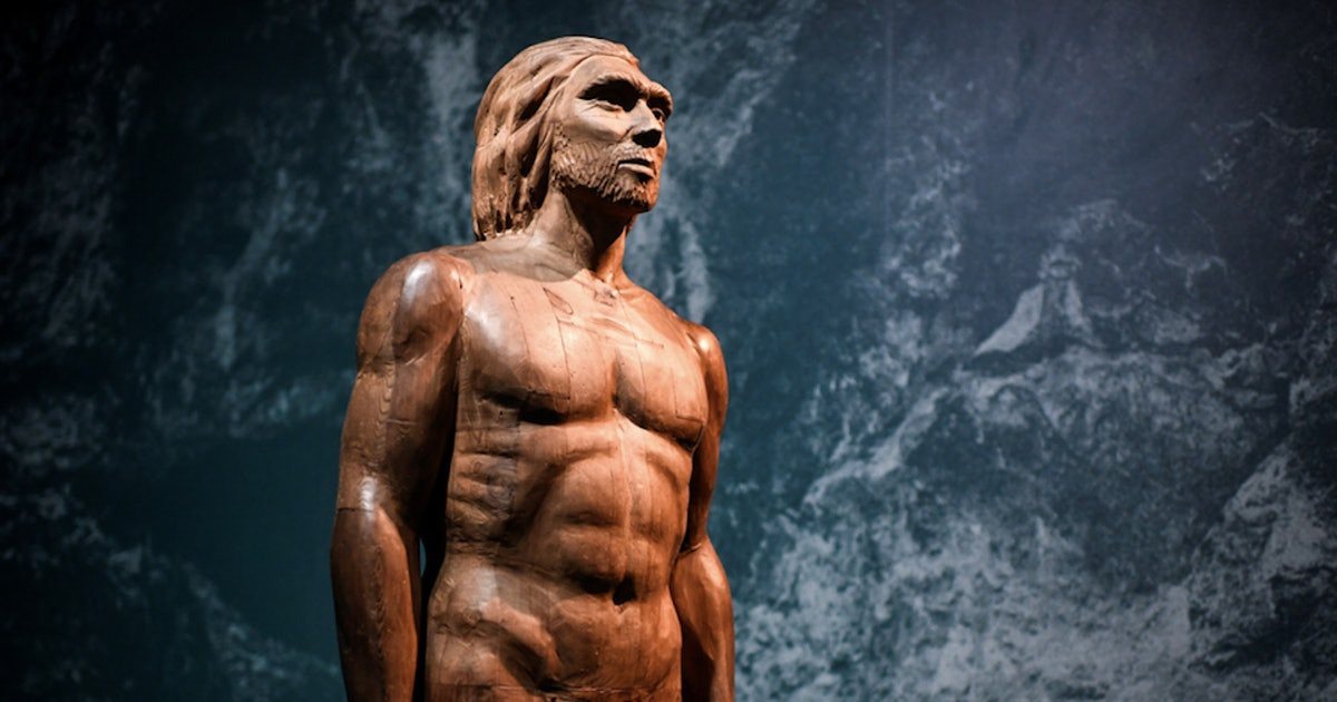 New study pinpoints 1 essential way Neanderthals were like us