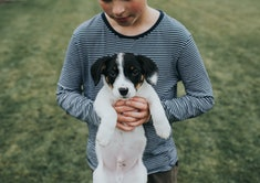 A boy holding a black and white dog.
