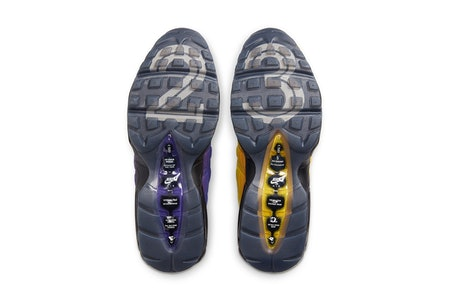 LeBron James Nike Air Max 95