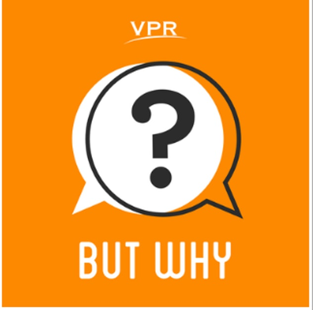 'But Why' is an NPR podcast for curious kids.