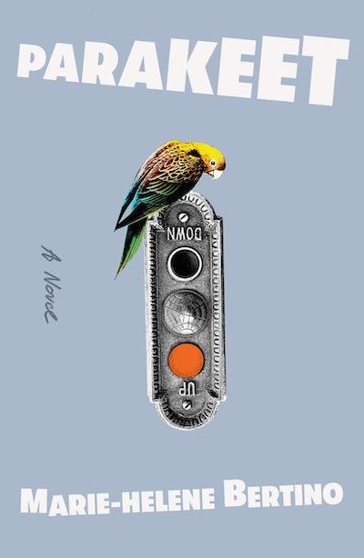 'Parakeet' by Marie-Helene Bertino