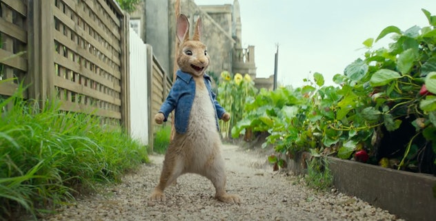 You can rent 'Peter Rabbit' on YouTube Movies.