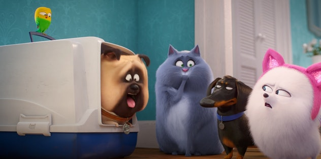 'The Secret Life of Pets 2' is streaming on Netflix.