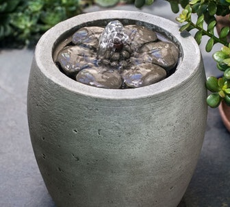 Bellis Fountain