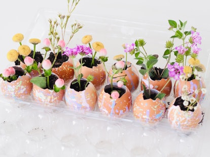 small speckled planters made from egg shells