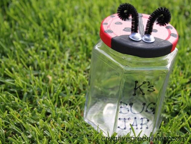 Capture lady bugs inside an old jar.