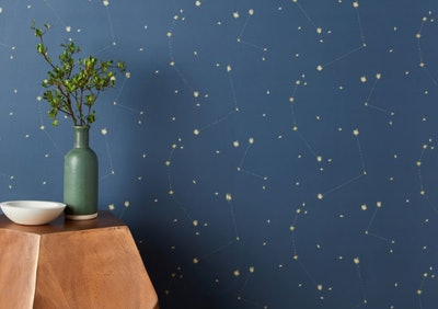 Chasing Paper Constellation Map Removable Wallpaper