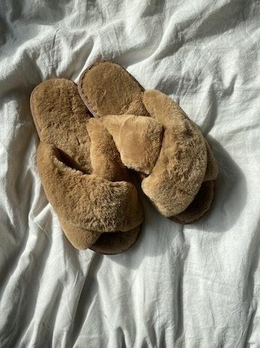 A Furry Slipper
