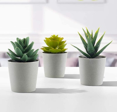 LuckyGreenery Artificial Succulents (Set Of 3)