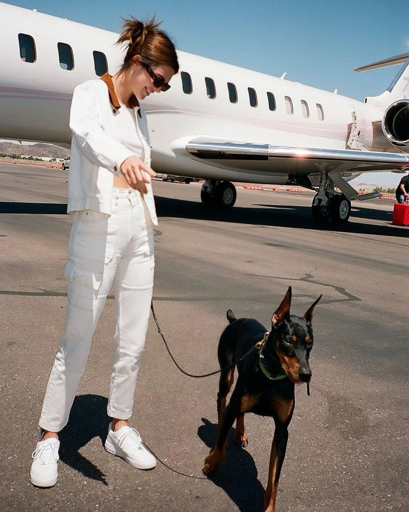 Kendall Jenner with her dog.