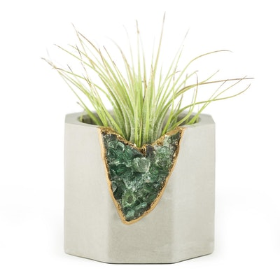 Green Apatite Geode Vessel + Air Plant