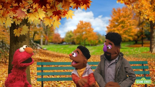 Sesame Street's Elmo discusses melanin with two new muppets, 5-year-old  5-year-old Wes and his father Elijah, in a new educational video about race, racism, and racial justice.
