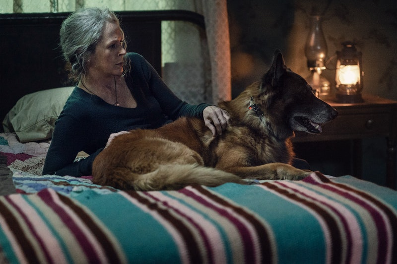 Carol and Dog in the latest episode of 'The Walking Dead' via the AMC press site