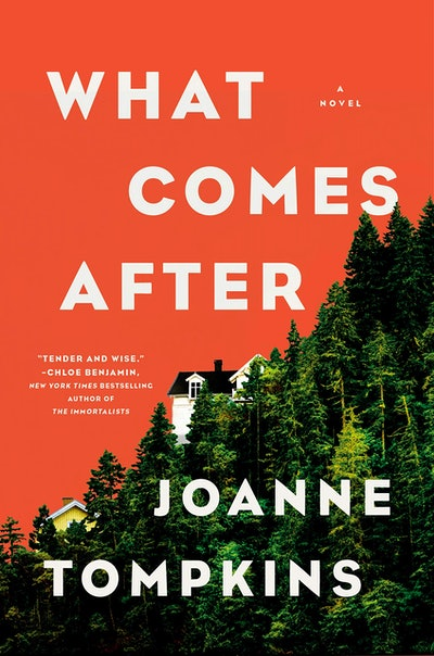 'What Comes After' by JoAnne Tompkins