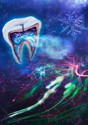 artist render tooth snake
