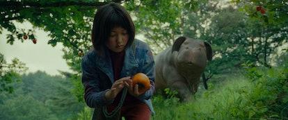 'Okja'