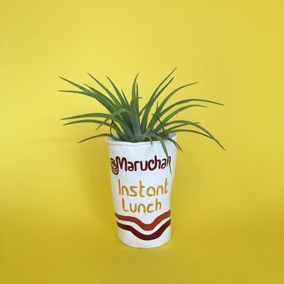 Ramen Noodle Planter