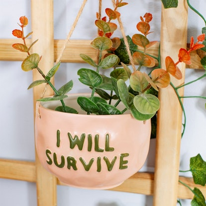 Sass and Belle I Will Survive Hanging Planter