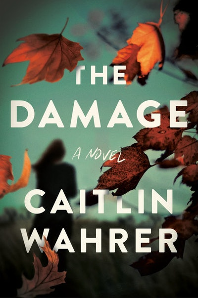 'The Damage' by Caitlin Wahrer