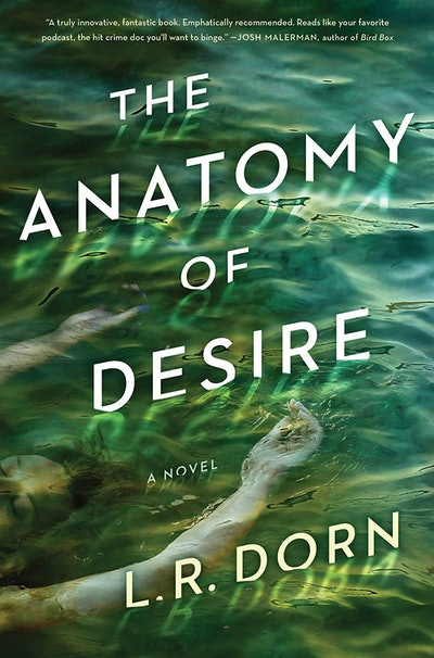 'The Anatomy of Desire' by L.R. Dorn