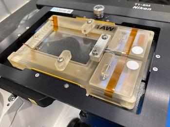 Se muestra el equipo NemaFlex con su casete de imágenes y una cámara de microscopio.