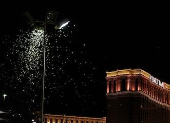 Grasshoppers near light on Las Vegas Strip