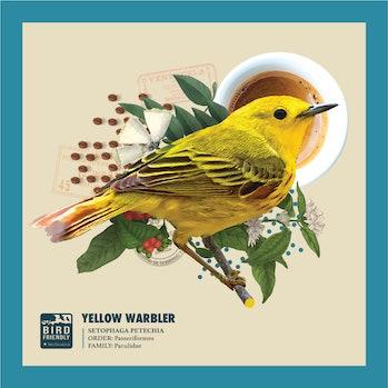 bird friendly coffee smithsonian