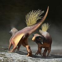 What did dinosaurs look like? An unlikely team is debunking old beliefs