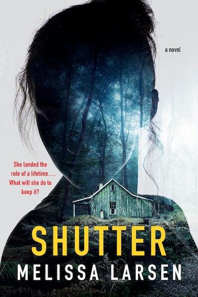 'Shutter' by Melissa Larsen