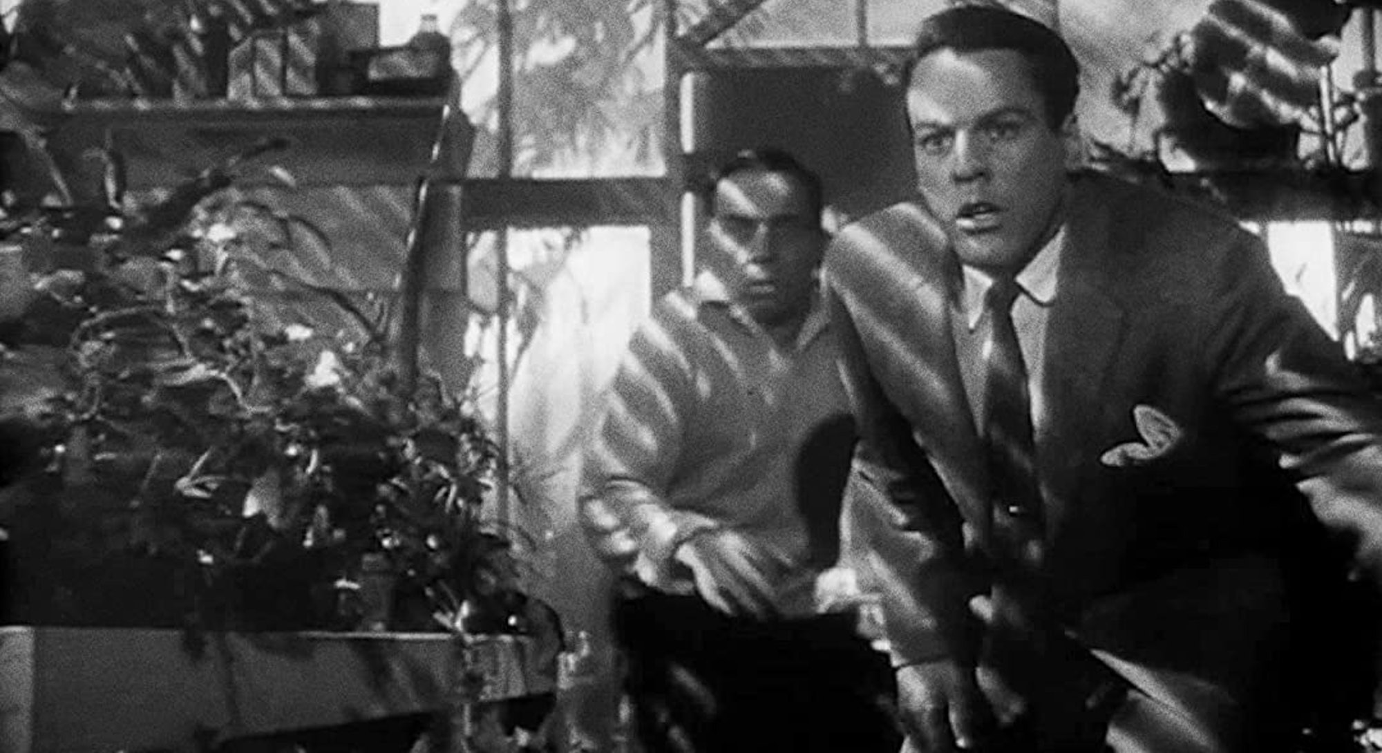 kevin mccarthy in greenhouse looking scared from invasion of the body snatchers