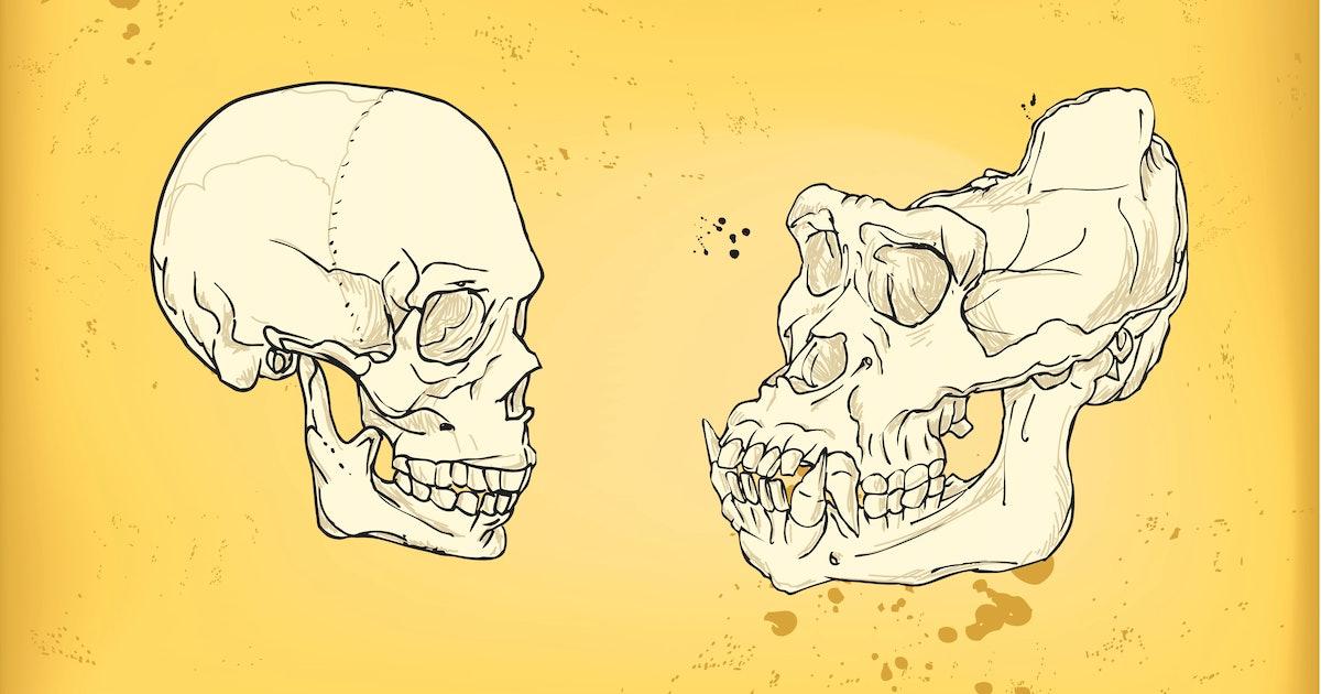 Counterintuitive study reveals 1 strange result of human evolution