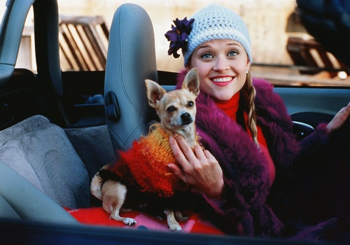 Legally Blonde featuring Reese Witherspoon is a great example of a female-empowerment film.