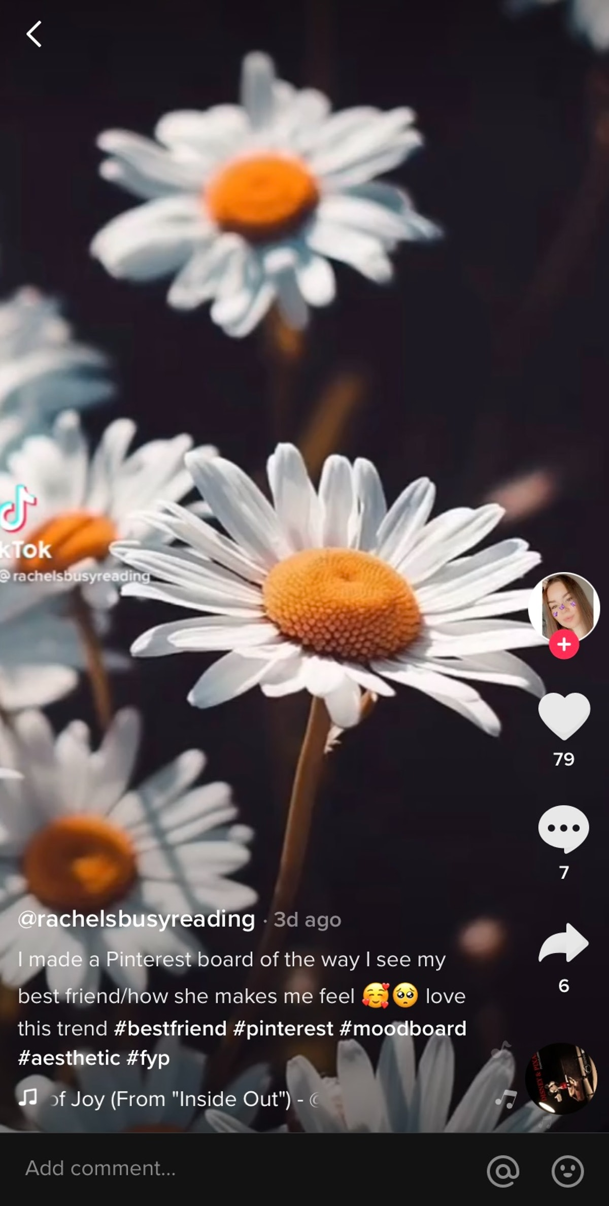 A TikToker makes a BFF Pinterest board that includes a stunning photo of daisies.